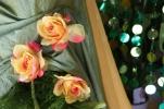 /uploads/thumb/thumb_20110223151627.jpg